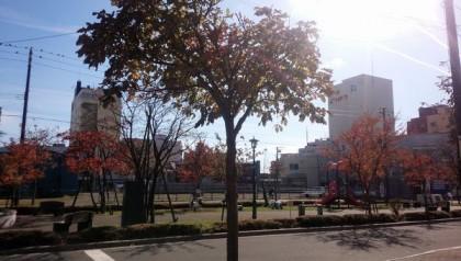 特養松濤201511082